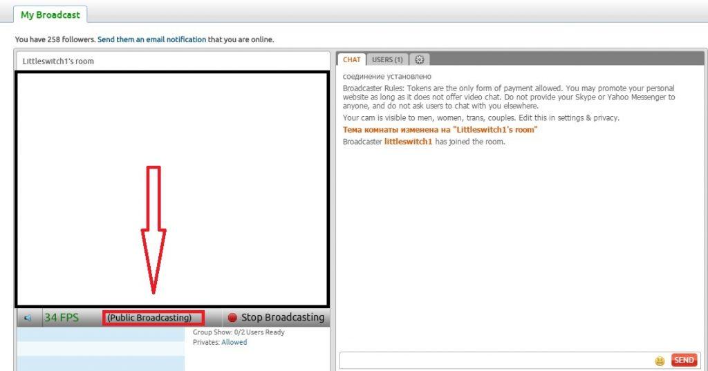 Как работать веб моделью на дому